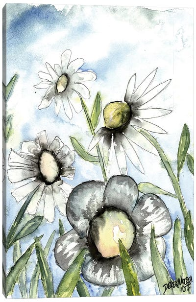 Field Of White Daisies Canvas Art Print