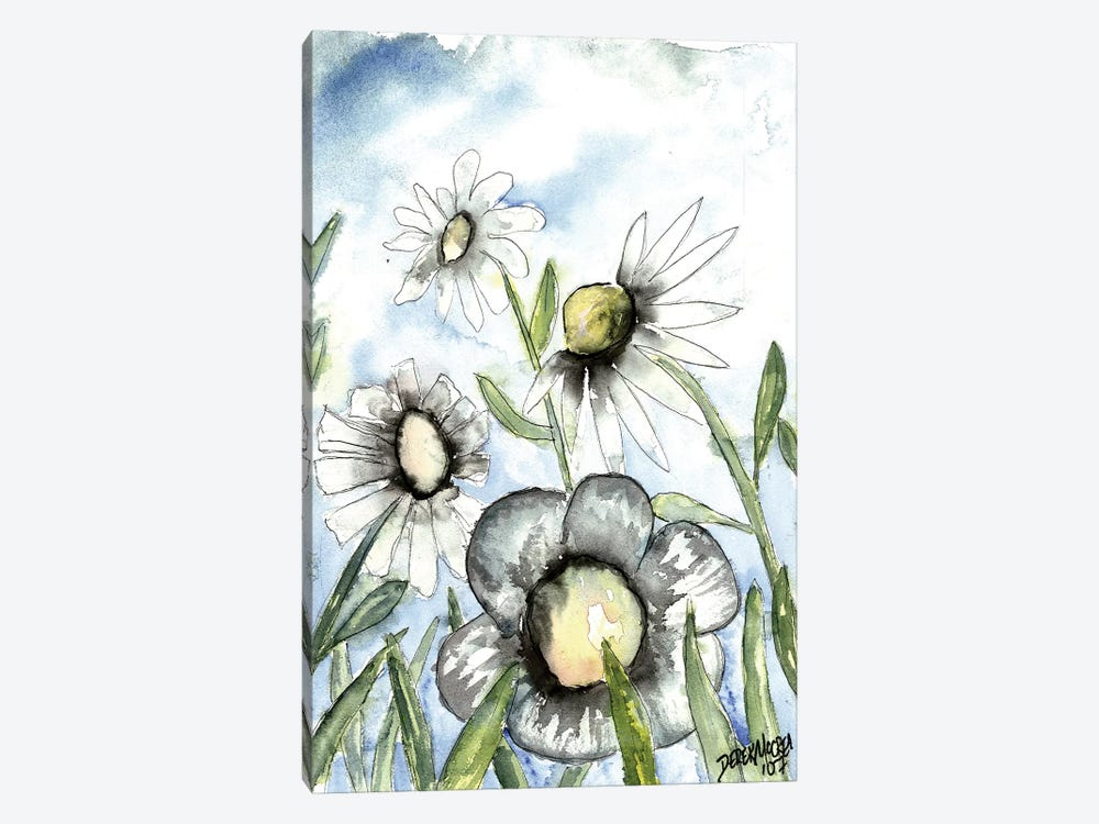 Field Of White Daisies 1-piece Canvas Wall Art