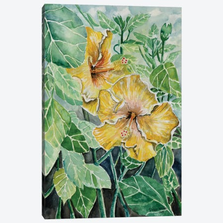 Hibiscus Flowers Tropical Canvas Print #DMC41} by Derek McCrea Canvas Art Print
