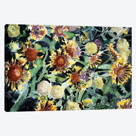 Indian Blanket Flowers 3-Piece Canvas #DMC42} by Derek McCrea Canvas Print
