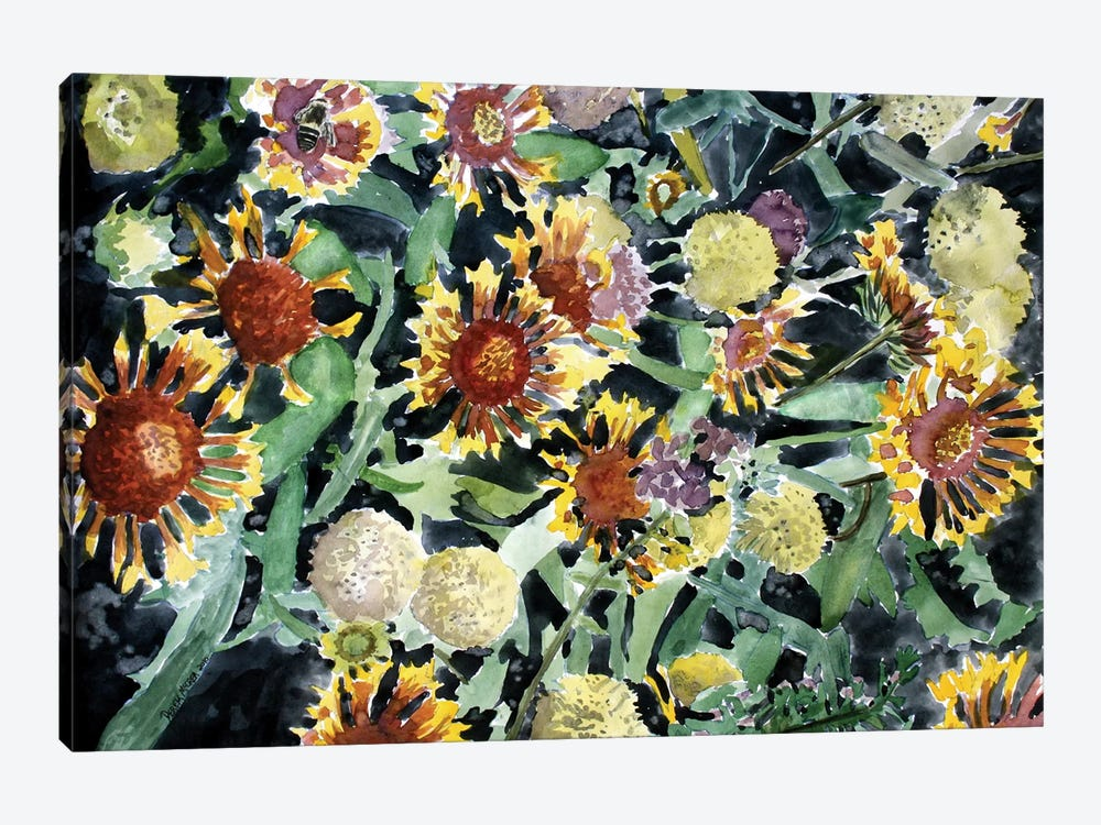 Indian Blanket Flowers 1-piece Canvas Wall Art
