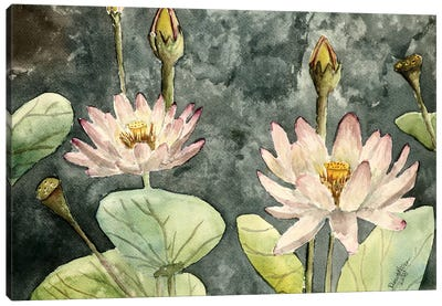 Lotus Flowers Canvas Art Print
