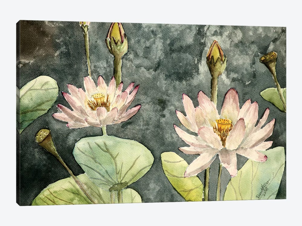 Lotus Flowers by Derek McCrea 1-piece Art Print