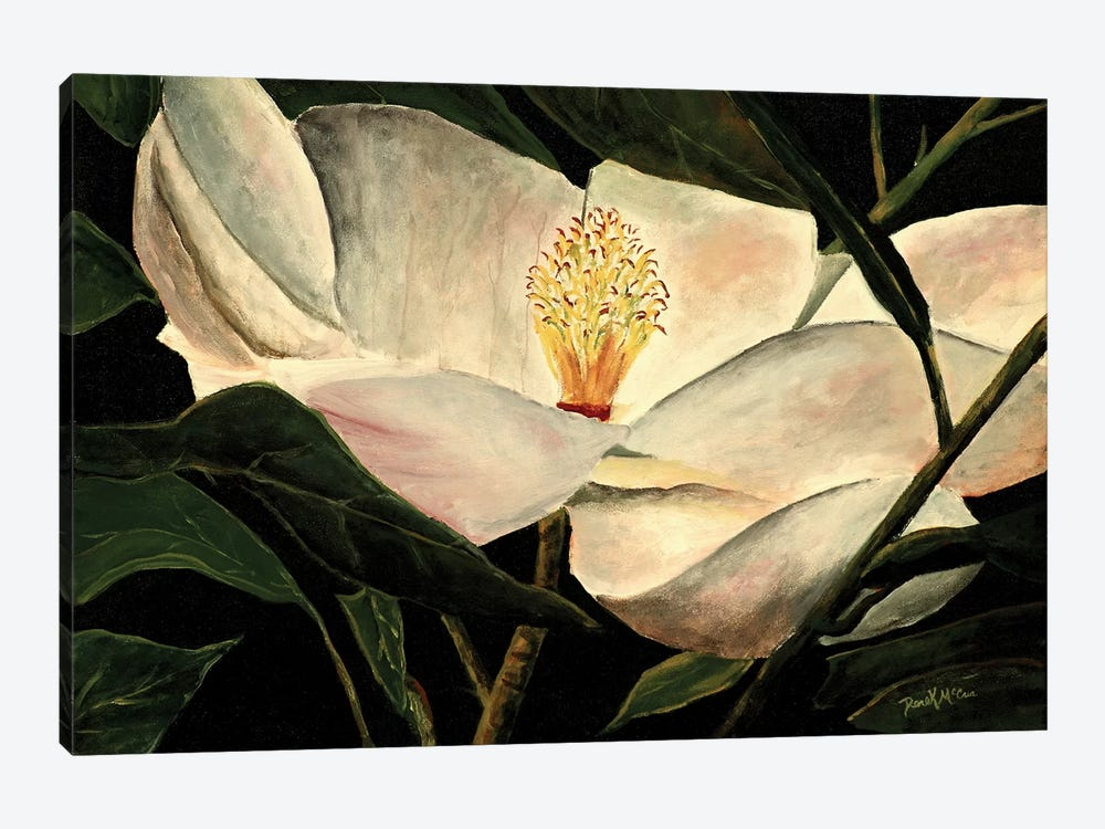 Magnolia Flower by Derek McCrea 1-piece Canvas Print