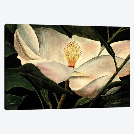 Magnolia Flower 3-Piece Canvas #DMC50} by Derek McCrea Canvas Art