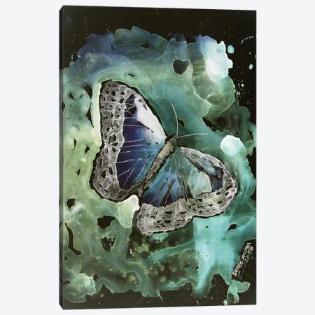 Monarch Butterfly I Canvas Print #DMC51} by Derek McCrea Canvas Artwork