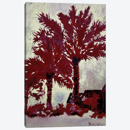 Palm Trees Canvas Print #DMC58} by Derek McCrea Canvas Wall Art