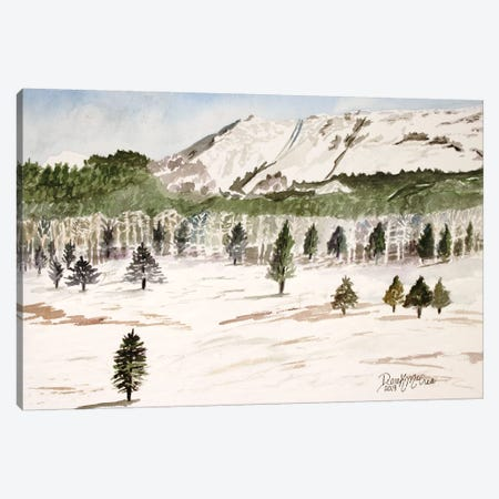 Pike's Peak Mountain Landscape 3-Piece Canvas #DMC63} by Derek McCrea Art Print