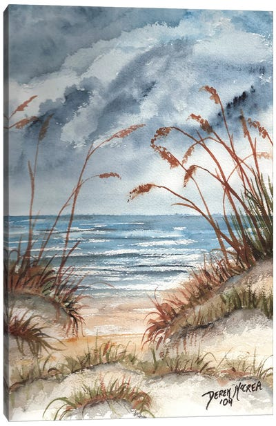 Sand Dunes Canvas Art Print
