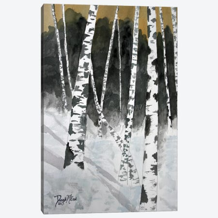 Birch Trees Canvas Print #DMC6} by Derek McCrea Art Print