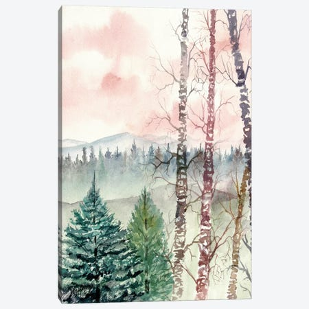 Birch Trees, Winter Landscape Canvas Print #DMC7} by Derek McCrea Canvas Print