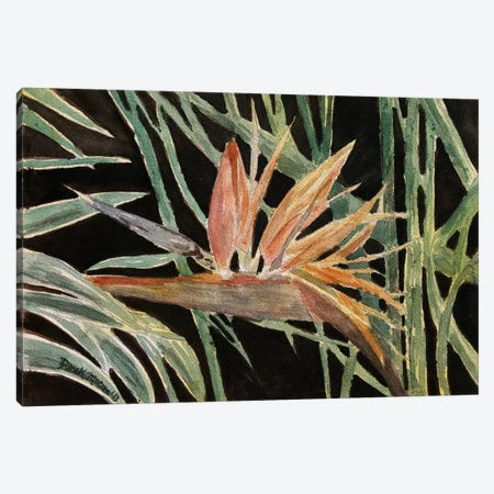 Bird Of Paradise Flower Canvas Print #DMC8} by Derek McCrea Canvas Art