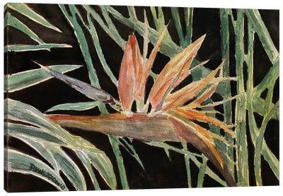 Bird Of Paradise Flower Canvas Art Print