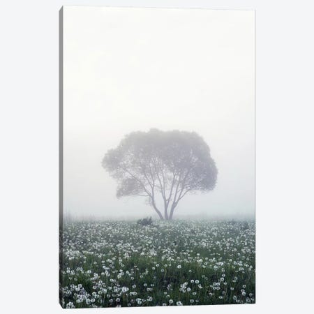 Lonely Tree Canvas Print #DMD2} by Dmitry Doronin Art Print
