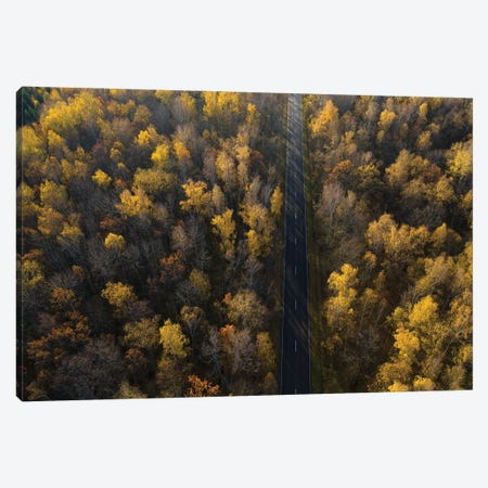 Road Canvas Print #DMD3} by Dmitry Doronin Art Print