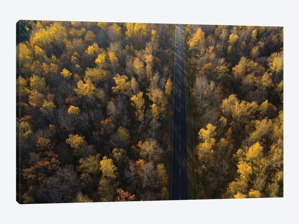 Road by Dmitry Doronin 1-piece Canvas Print