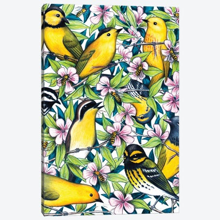 Birds And The Bees Canvas Print #DMH10} by Don McMahon Canvas Print