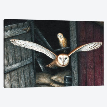 Born In A Barn Canvas Print #DMH17} by Don McMahon Canvas Artwork