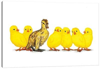 Chicks Dig Me Canvas Art Print