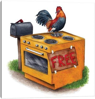 Free Range Chicken Canvas Art Print