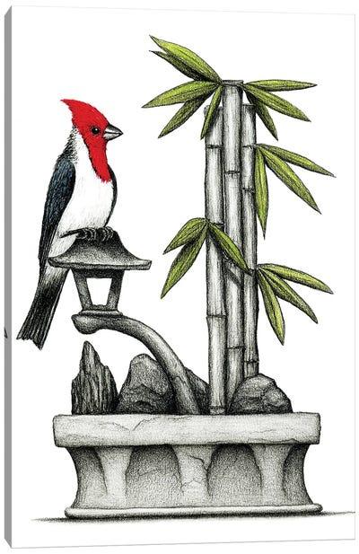 Hawaiian Red Crest Canvas Art Print