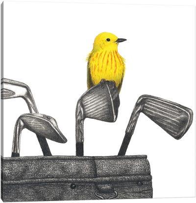 Iron Warbler Canvas Art Print