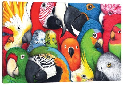Parrotheads Canvas Art Print