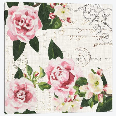 Ephemeral Roses I Canvas Print #DMI12} by Dianne Miller Canvas Art