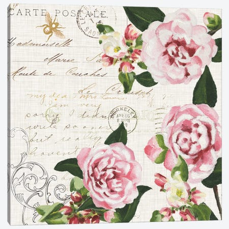 Ephemeral Roses II Canvas Print #DMI13} by Dianne Miller Canvas Art
