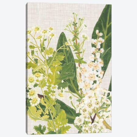 April in Paris III Canvas Print #DMI18} by Dianne Miller Canvas Wall Art