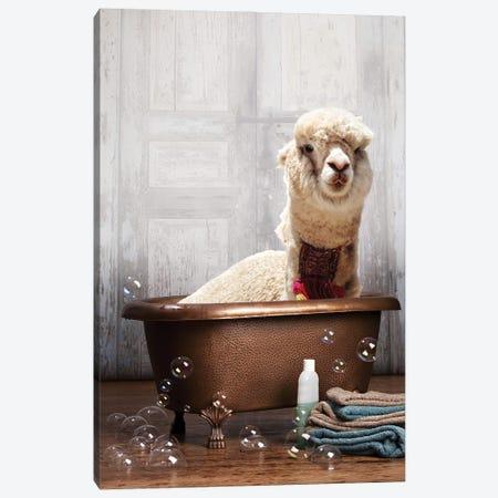 Llama In A Bathtub Canvas Print #DMQ183} by Domonique Brown Canvas Art Print
