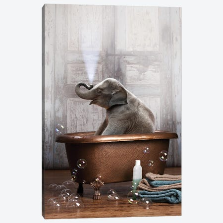Elephant In The Tub Canvas Print #DMQ28} by Domonique Brown Canvas Art Print