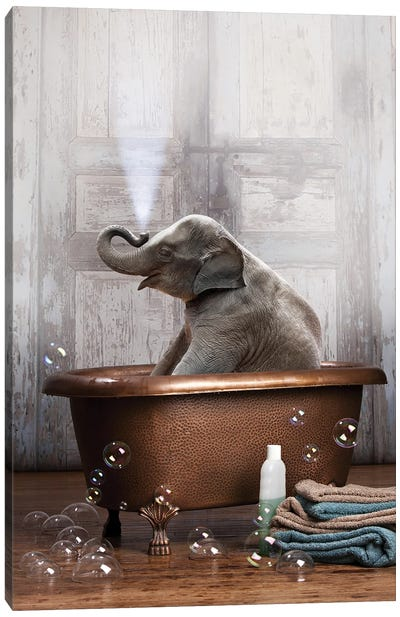 Elephant In The Tub Canvas Art Print