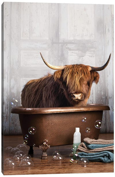 Highland Cow In The Tub Canvas Art Print