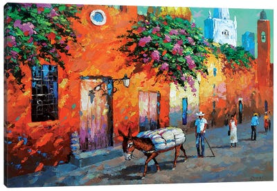Mexican Caslle Canvas Art Print