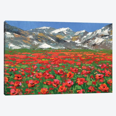 Mountain Poppies Canvas Print #DMT117} by Dmitry Spiros Canvas Print