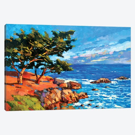Pine Tree At Dawn Canvas Print #DMT139} by Dmitry Spiros Canvas Wall Art