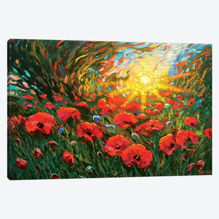 Poppies At Sunset Canvas Print #DMT142} by Dmitry Spiros Art Print