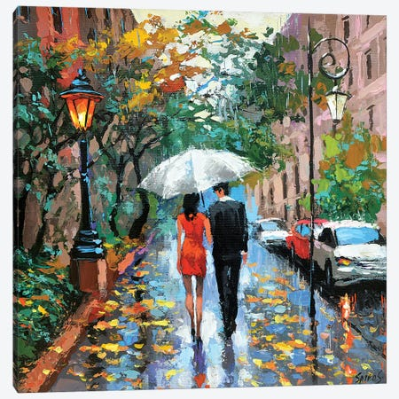 Today Is Rainy Canvas Print #DMT175} by Dmitry Spiros Art Print