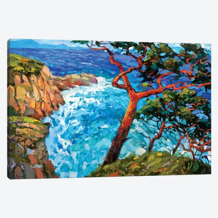 Windy Bay Canvas Print #DMT199} by Dmitry Spiros Canvas Art