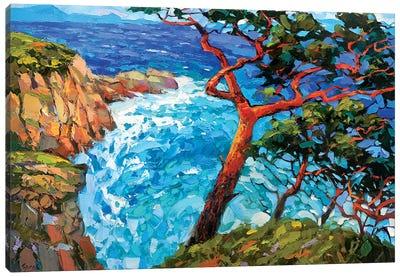 Windy Bay Canvas Art Print