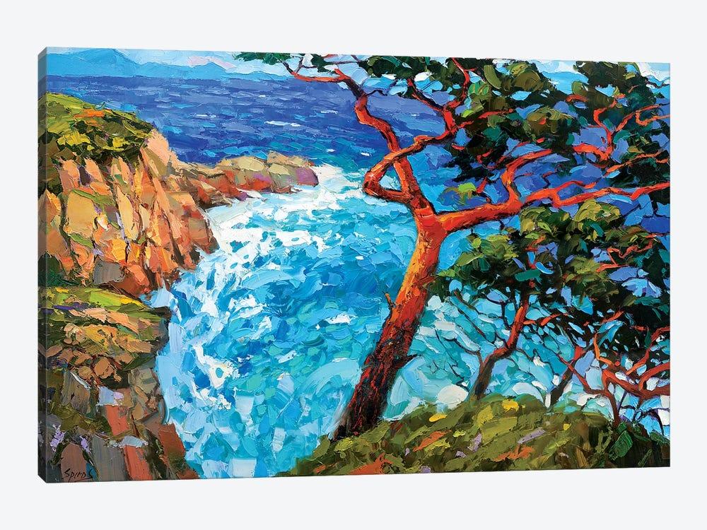 Windy Bay by Dmitry Spiros 1-piece Canvas Print