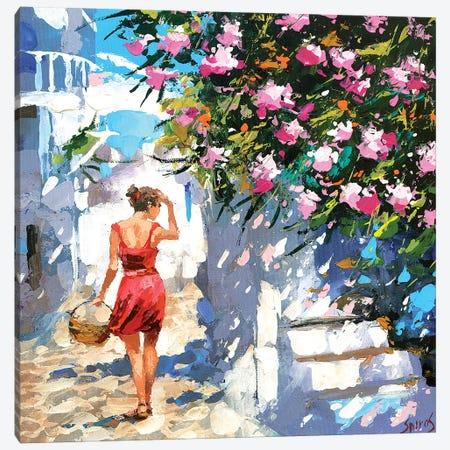 Greek Lane Canvas Print #DMT202} by Dmitry Spiros Canvas Art