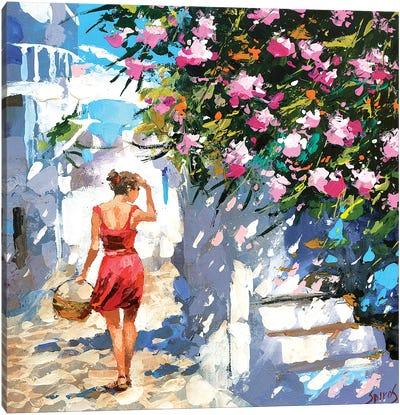 Greek Lane Canvas Art Print