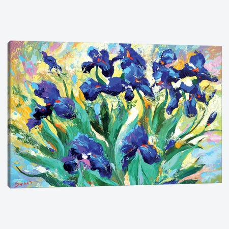 Blue Irises I Canvas Print #DMT22} by Dmitry Spiros Canvas Art