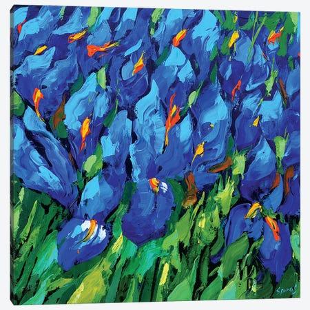 Blue Irises II Canvas Print #DMT23} by Dmitry Spiros Canvas Art