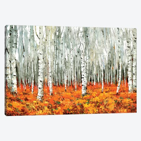 Bosque Canadiense Canvas Print #DMT31} by Dmitry Spiros Canvas Print