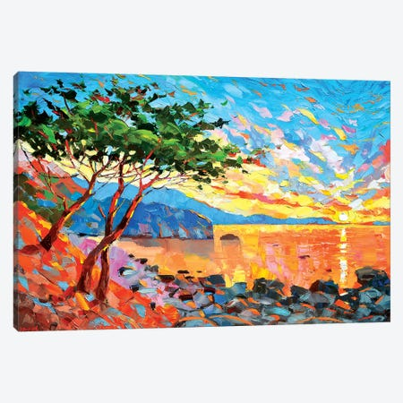 Color Of Dawn Canvas Print #DMT44} by Dmitry Spiros Canvas Print