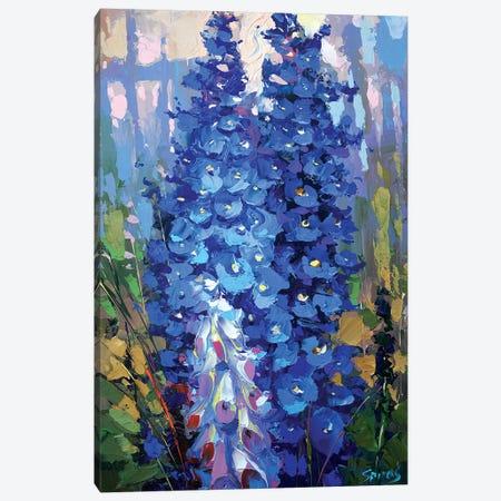 Delphiniums Canvas Print #DMT47} by Dmitry Spiros Canvas Print