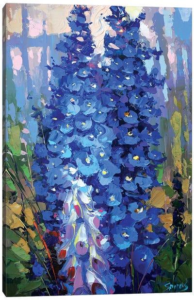 Delphiniums Canvas Art Print